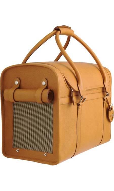 Because my dog is spoiled...Barneys New York Dog Carrier $1,995