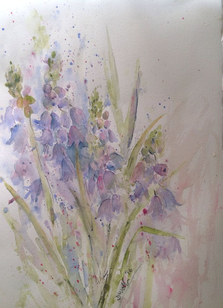 Bluebells by Donna Wollin