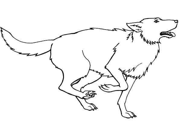Wolf Running For Prey Wolf Coloring Page Disenos De Unas