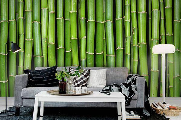 The 25 best wallpaper suppliers ideas on pinterest 3d for Accents salon bellingham