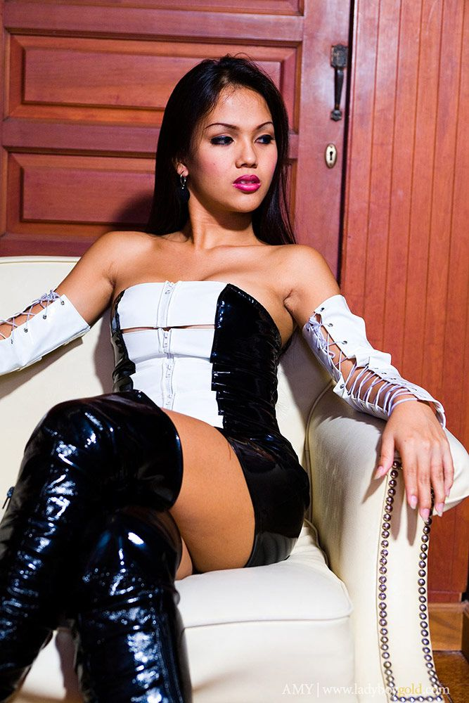 Pattaya ladyboy guide-2437
