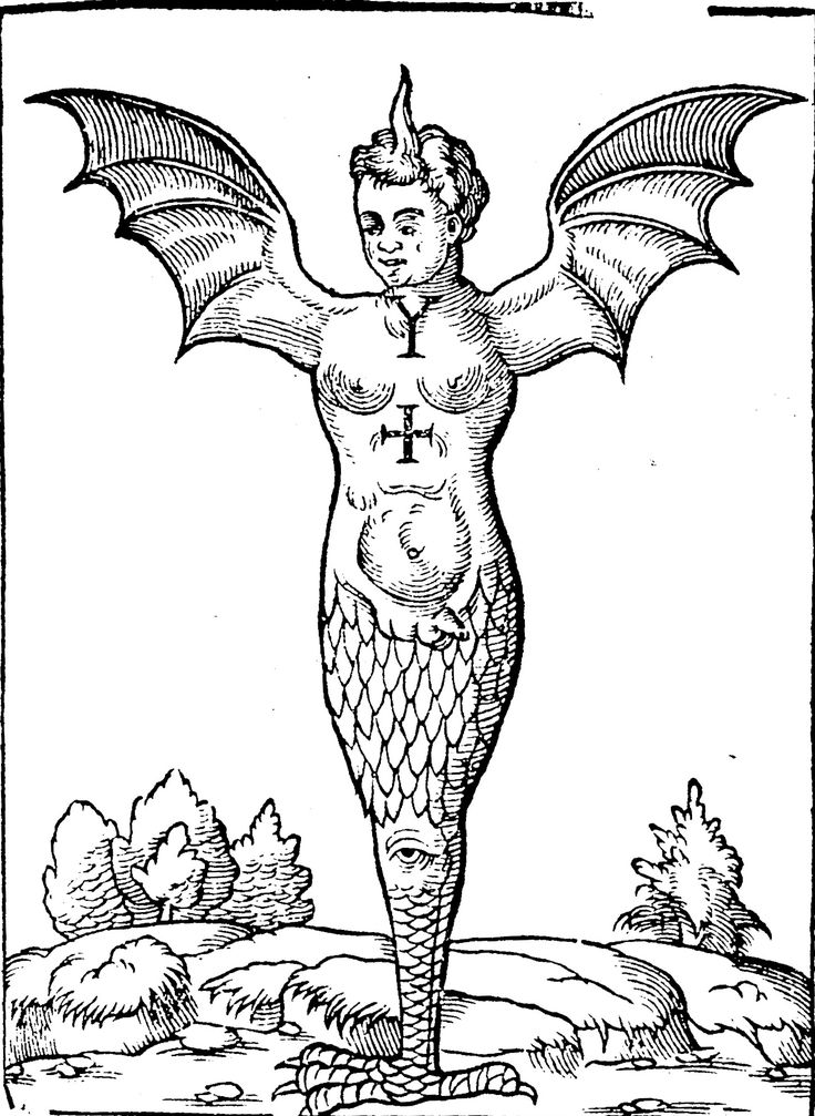 The Ravenna Monster. From 'The Doome, warning all men to the Judgement,' 1581