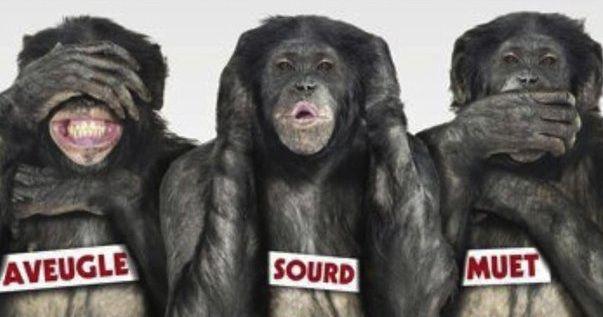 3-singes-sagesse-bonobos