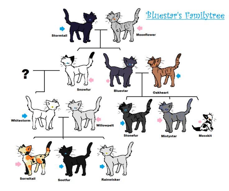 7 Best Warrior Cat Family Tree Images On Pinterest