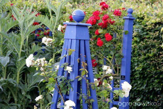 Galeria zdjęć - Pielęgnacja ogrodu - Ogrodowisko