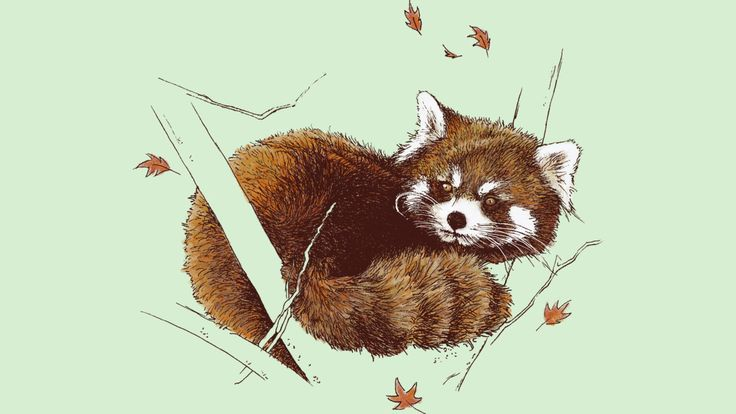 Red Panda is a T Shirt designed by neleez to illustrate your life and is available at Design By Humans