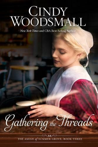 Gathering the Threads: A Novel (The Amish of Summer Grove... https://smile.amazon.com/dp/1601427034/ref=cm_sw_r_pi_dp_x_kbSYzbKW6PC67