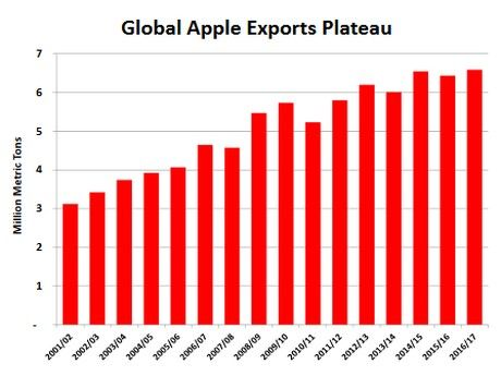 WorldTotal World apple production in marketing year 2016-17 is forecast to rise 1.2 million metric tons (tons) to 77.6 million as Chile rebounds and China continues its upward trend. Global.....