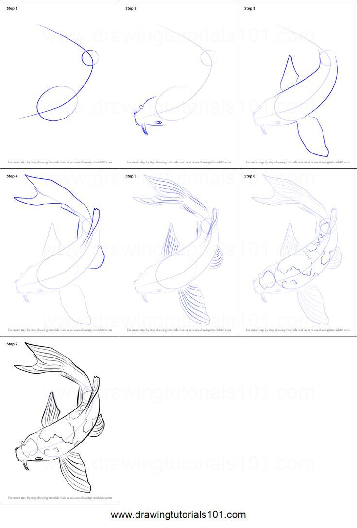 How to Draw a Koi Fish Printable Drawing Sheet from DrawingTutorials1