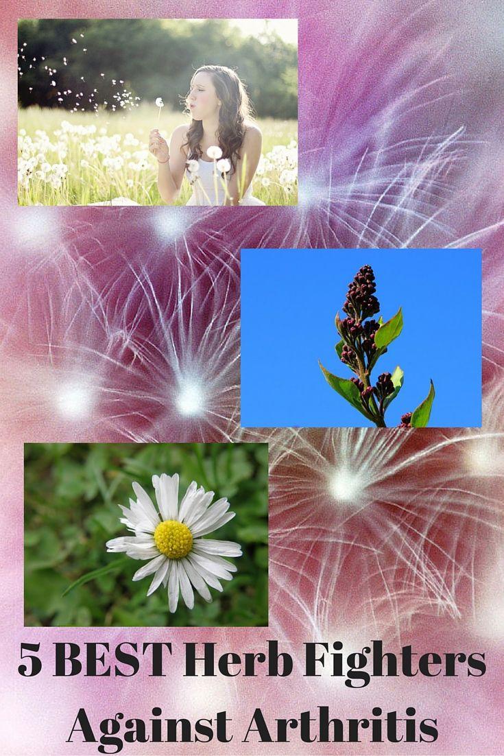 5 BEST Herb Fighters Against Arthritis  Read more at:  http://www.herbiol.com/5-best-herb-fighters-against-arthritis/