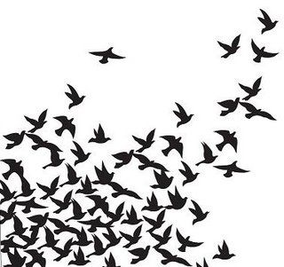 bird silhouettes by twilightrun, via Flickr