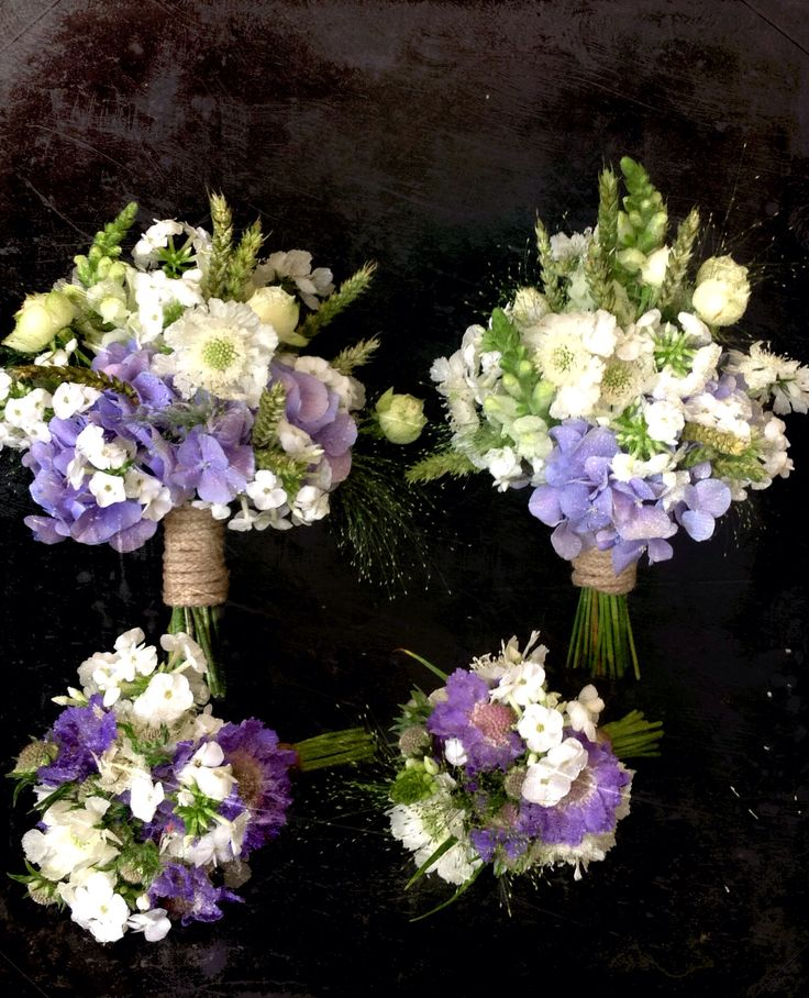 Best 25+ Phlox bridesmaid flowers ideas on Pinterest ...