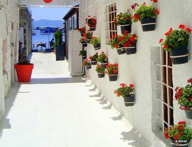 Bodrum, Muğla, Turkey.