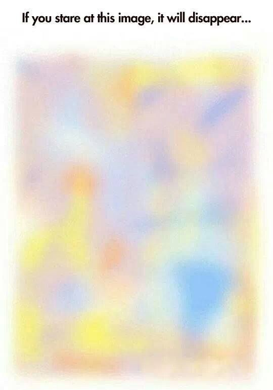 If you stare at this image, it will disappear... WTF it worked