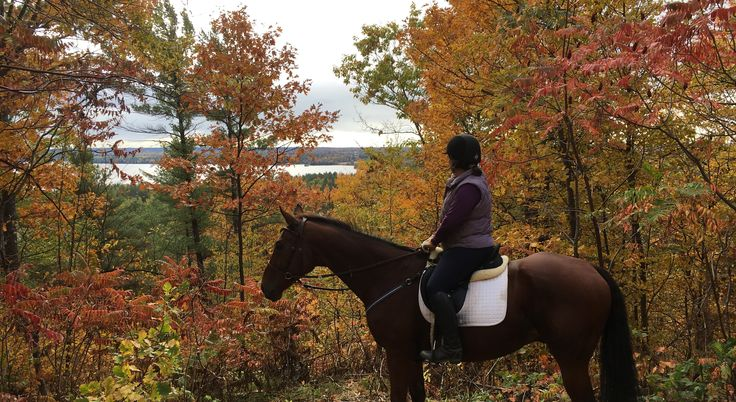 Beautiful Fall Horseback riding at #horsecountrycampground the trails are beautiful