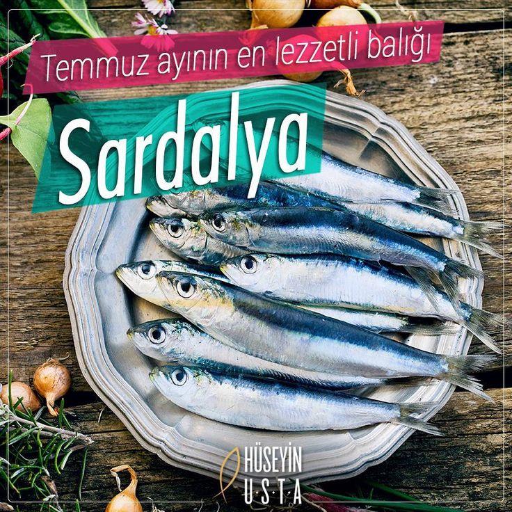 Rakı - balık / July
