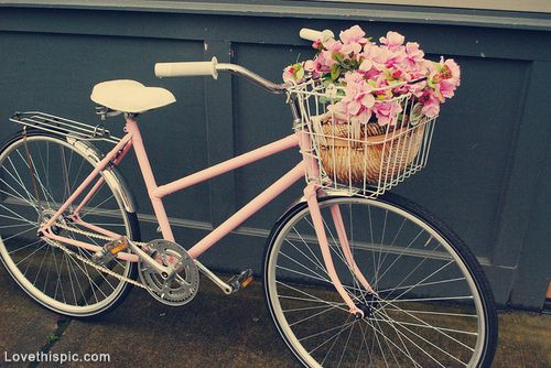 Vintage Bike with Basket photography pink vintage flowers bike basket hydrangeas