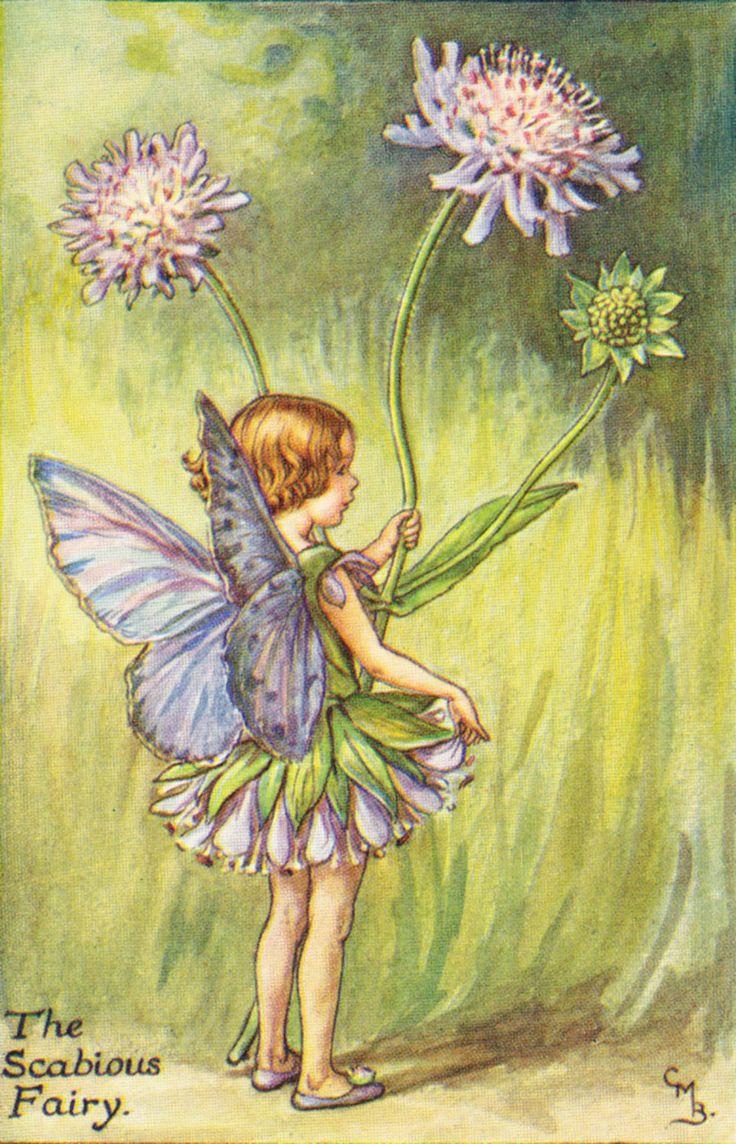 776 best Artist Cicely Baker Fairy images on Pinterest