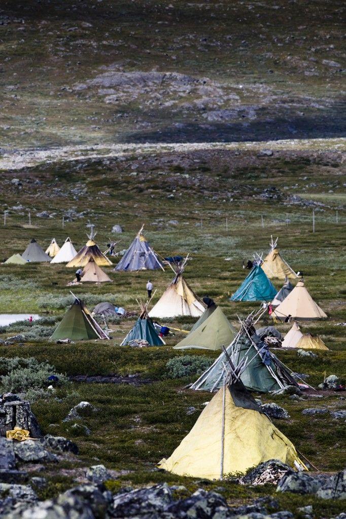 summer lavvu camp   (zomer sami-kamp