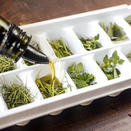9 Surprising Things You Can Freeze in Ice Cube Trays | FWx