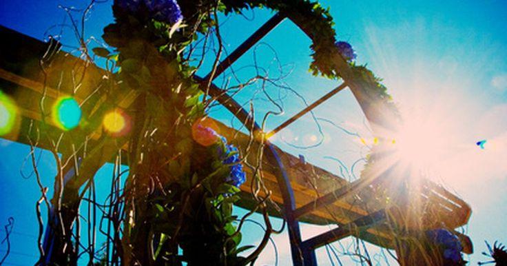 Cómo hacer un arreglo floral en un arco. Un arco repleto con abundantes flores puede ser un estupendo agregado a una boda, una fiesta exterior u otro evento. Generalmente, los arcos se hacen de metal o de madera, y la posibilidad de agregarle un arreglo de flores puedes ser desafiante. Sin embargo, hacer arreglos florales para un arco es relativamente sencillo, especialmente si estás ...