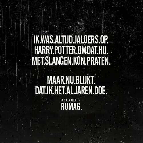 Rumag met Harry Potter