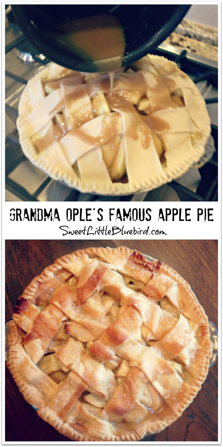 GRANDMA OPLE'S FAMOUS APPLE PIE-  Awesome tried & true recipe with hundreds of rave reviews.   The BEST apple pie ever! Simple to make too. New family favorite!  |  SweetLittleBluebird.com