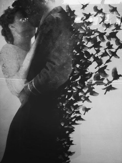 """"""" Your kiss runs through me like opium. I feel the bursting of thirst, the pounding of skin—a breaking up of pulse and memory…"""