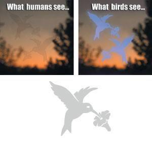 Window Alert Decals- Prevent Bird Strikes