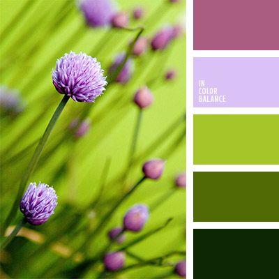 color lila, combinación de colores, de color púrpura, de color verde lechuga, elección del color, morado, selección de colores para un baño, tonos verdes, tonos violetas, verde claro, verde oscuro, verde y violeta, violeta claro.