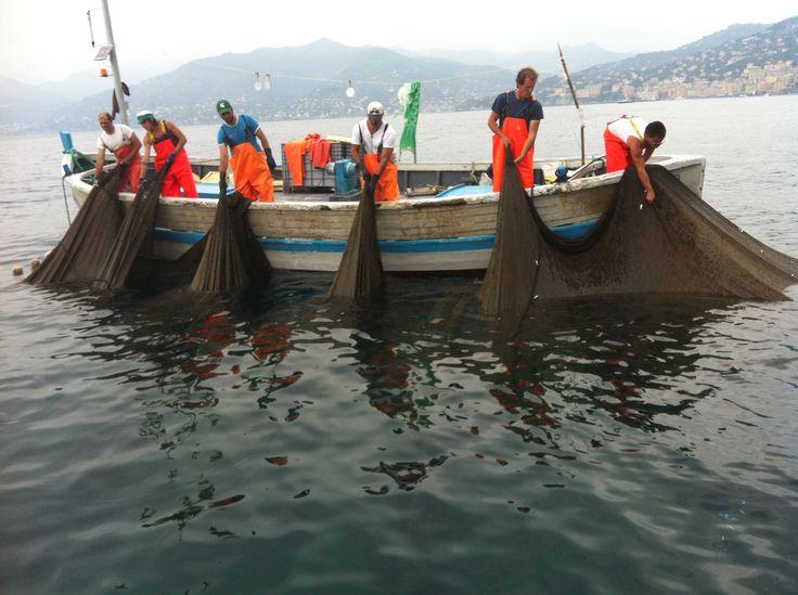 Tour gastronomico via mare - La Tonnarella di Camogli