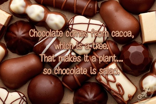 Chocolate comes from cacoa, which is a tree. That makes it a plant... so chocolate is salad.  #chocolate #cocoa #tree #plant #salad #quotes  ©The Gecko Said - Beautiful Quotes - Thegeckosaid.com™