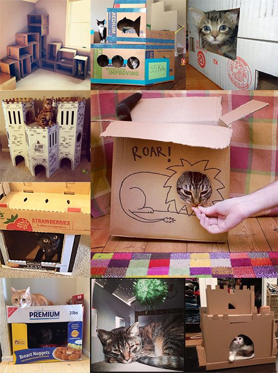 Cardboard Contest Entries _ Cat Castles