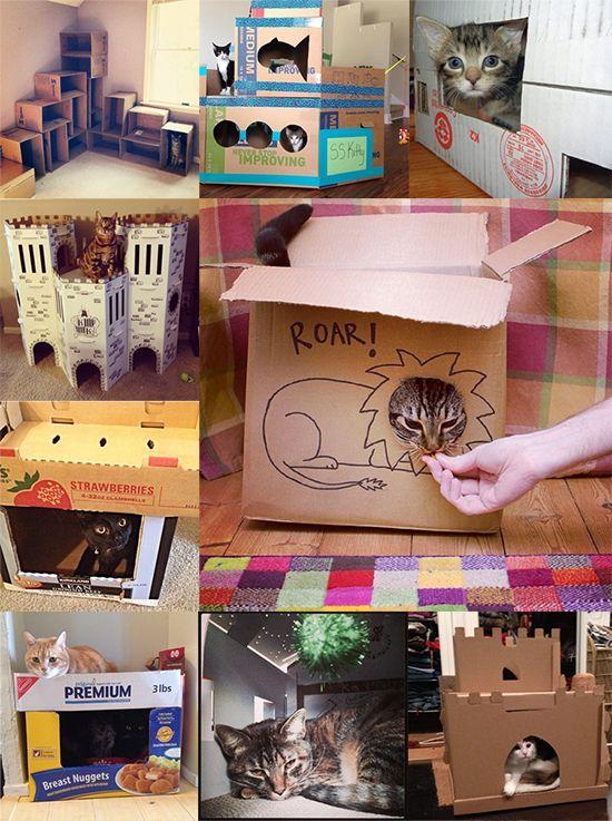 Cardboard Contest Entries _ Cat Castles