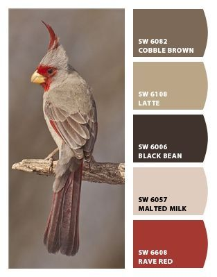 Paint colors from Chip It! by Sherwin-Williams. These neutrals would look good with any accent color.