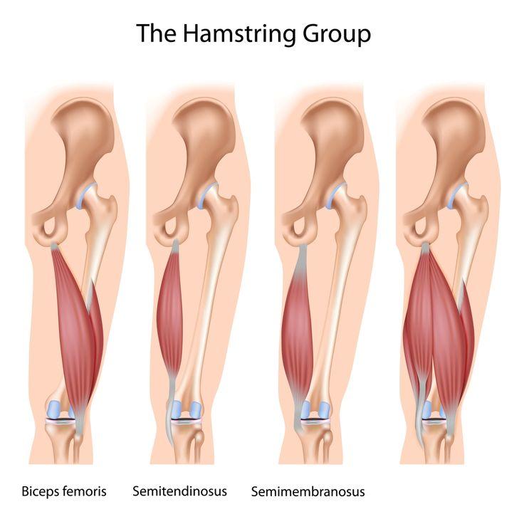 Disse øvelsene gir deg sterkere muskler på baksiden av lårene.