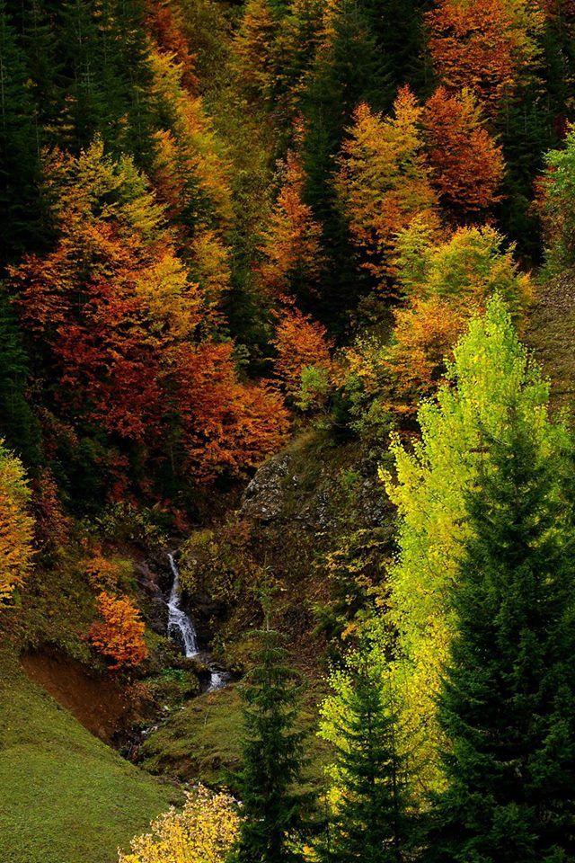 Artvin ⛵ Eastern Blacksea Region of Turkey ⚓ Östliche Schwarzmeerregion der Türkei #karadeniz #doğukaradeniz #artvin #travel #nature #ecotourism #cittaslow #mythological #colchis #thegoldenfleece #thecolchiandragon #amazonwarriors #tzaniti