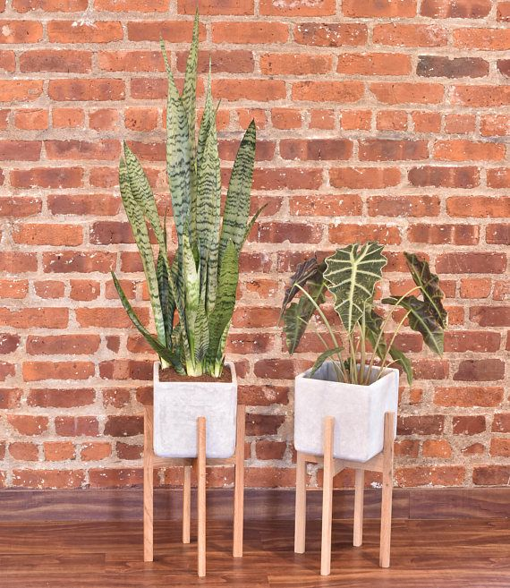 Modern Planter Stand with Cement Pot Mid Century Modern