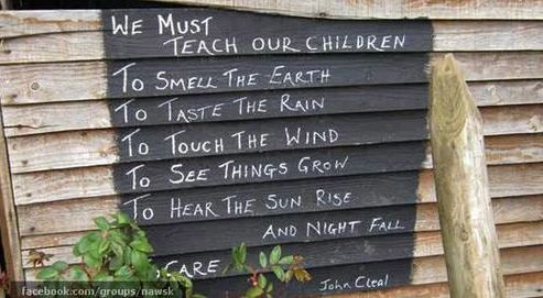 The most important lessons.Words Of Wisdom, Gardens Ideas, Inspiration, Teaching, Chicken Coops, Wall Quotes, Children, Outdoor Plays, Things