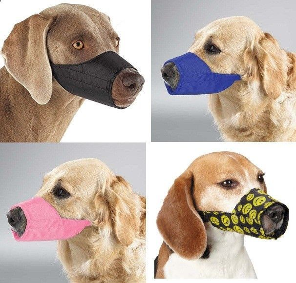 NYLON DOG MUZZLE, Blue Black Pink, Fabric, Adjustable Guardian Gear No bite bark in Pet Supplies, Dog Supplies, Training  Obedience | eBay