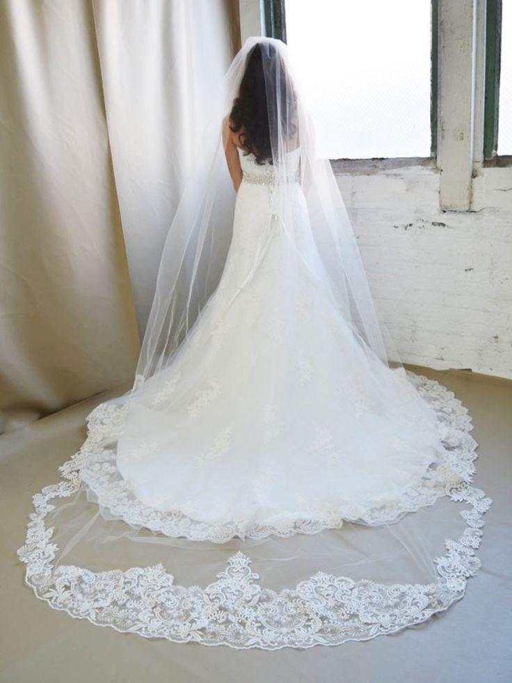 """Cathedral veil with lace featuring an Edwardian motif scallop along the bottom and a metallic silver trim along the sides. This lace wedding veil is made of quality illusion tulle that measures 108"""" l"""