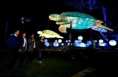 В Сиднее проходит фестиваль гигантских световых скульптур. ФОТО http://dneprcity.net/blogosfera/v-sidnee-proxodit-festival-gigantskix-svetovyx-skulptur-foto/  В Сиднее, в зоопарке Таронга проходит интересный фестиваль световых скульптур. Десятки гигантских световых скульптур животных находятся здесь сейчас. Ехидна и муравьи. Азиатский слон. Светящийся носорог. В общей сложности фестиваль будет