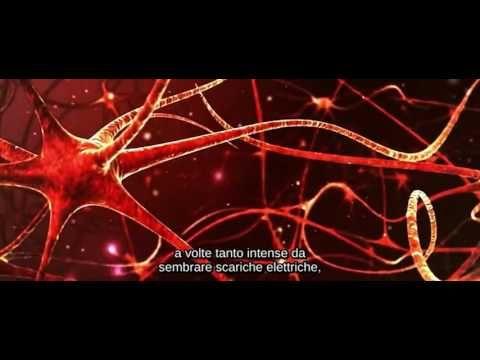 Paralisi del sonno - Documentario - YouTube