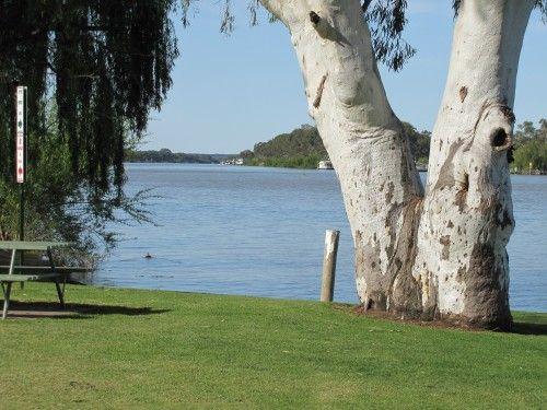The Murray River at Mannum, South Australia