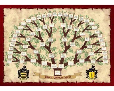 Árbol Genealógico de Antepasados por todas las ramas