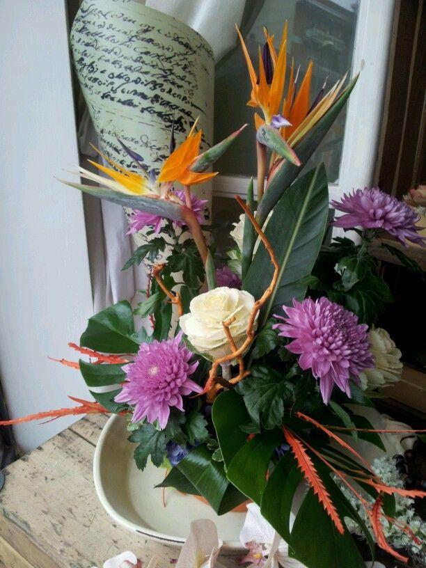 Composizione con sterelizie, brassica e crisantemi.