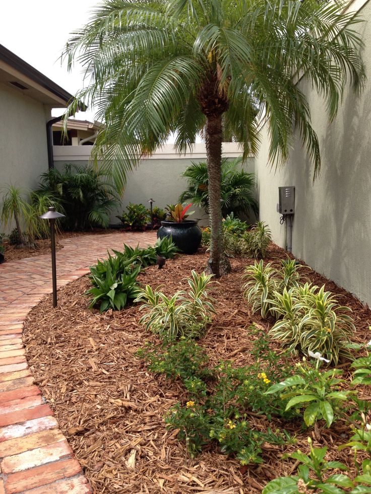 Tropical backyard design with old chicago brick pavers for Landscape design chicago
