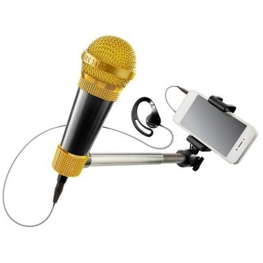 A selfie mic! You know your kids want this!