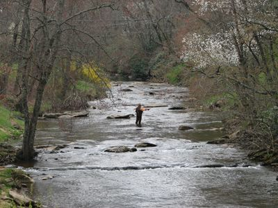 Fishing in the New River NC Mountains near Sparta