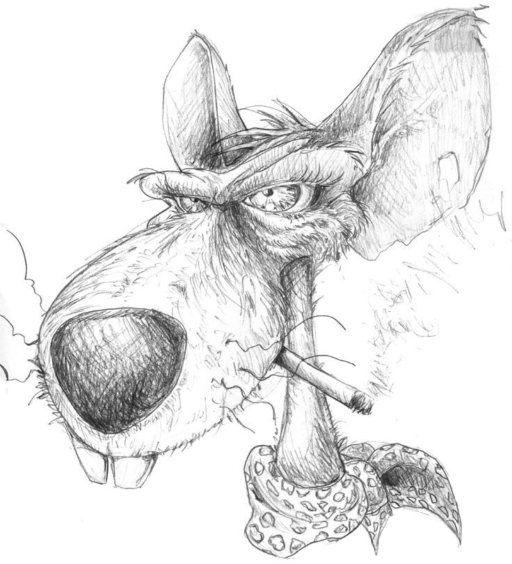 dessin au crayon rat
